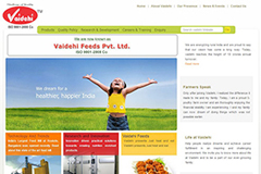 black butterfly web designer vaidehi feeds
